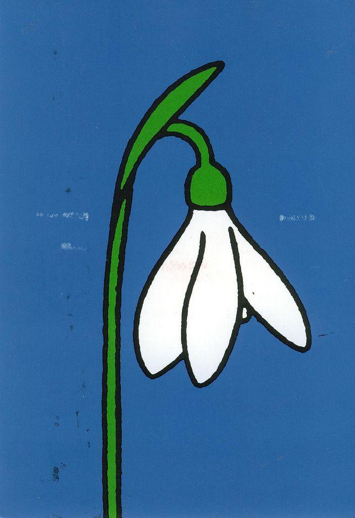 Dick Bruna illustration - Schneegloeckchen