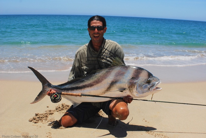 Rooster fish places i want to fish fish i want to catch for Rooster fish pictures