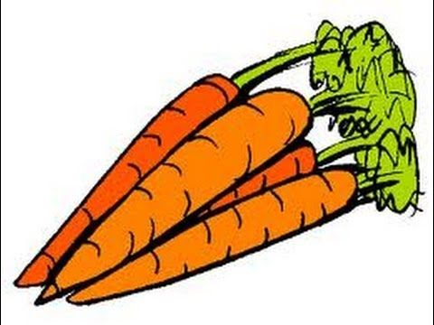 Companion Planting Carrots And Tomatoes Youtube 640 x 480