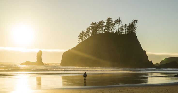 10 Photos to Inspire You to Explore Olympic National Park