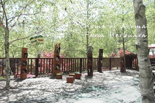 Book tree, outdoor library , Farm Herbnara, Korea