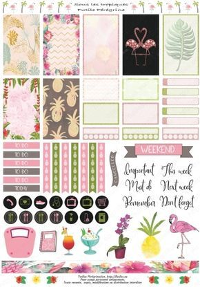 Free Printable Tropical Planner Stickers