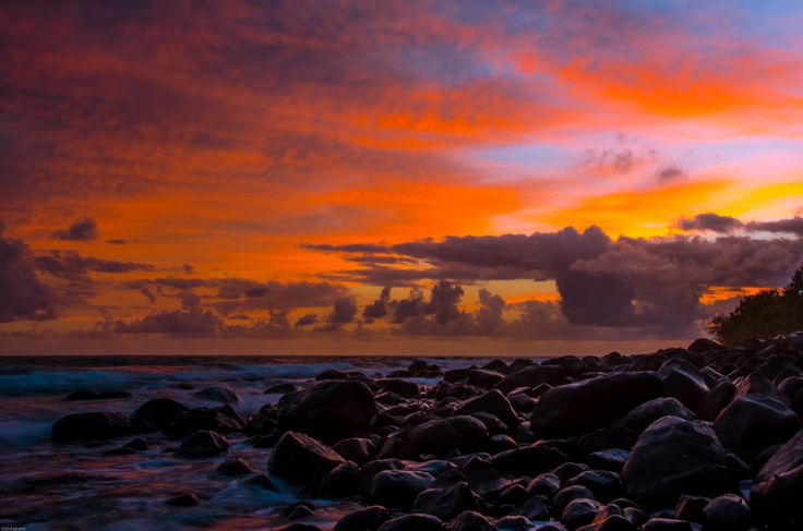 A Mon Repos sunrise. Photo by Photography by Jewelszee