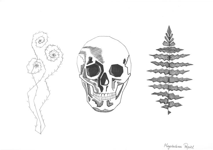 HUMAN NATURE, czaszka, anatomia #mskpu