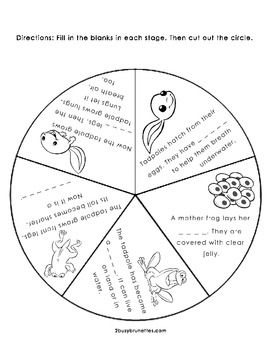 Life Cycle of a Frog Wheel free