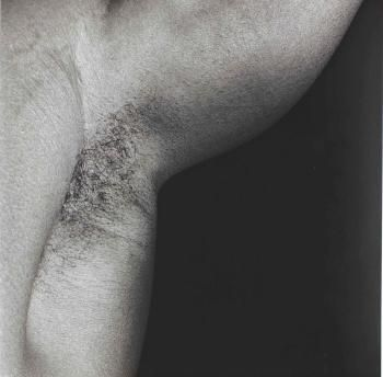 Armpit by ROBERT MAPPLETHORPE