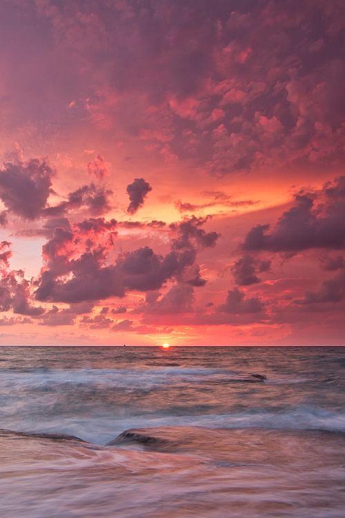 pink skies