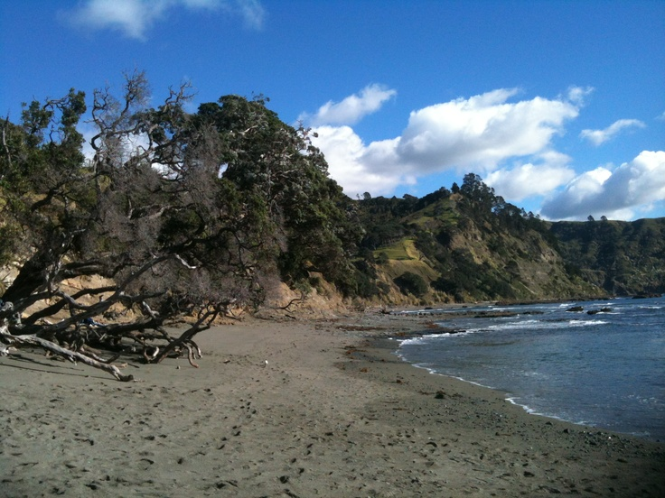 Cold but sunny - such a beautiful place - even in winter time - and only 20 mins from Matakana.