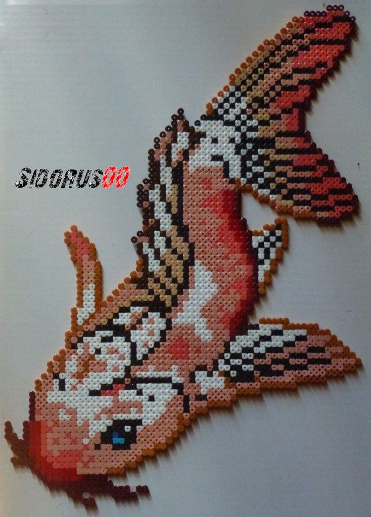 172 best images about creation hama bead on pinterest for Koi fish beads