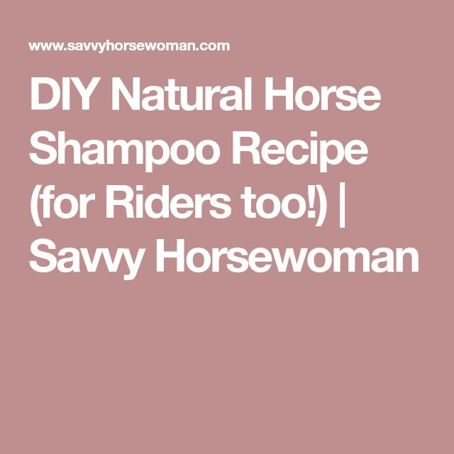 DIY Natural Horse Shampoo Recipe (for Riders too!) | Savvy Horsewoman