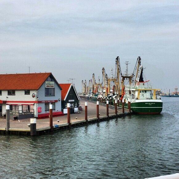Haven Harbour Texel