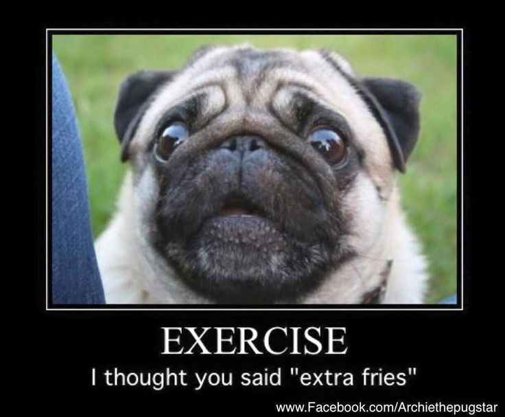"Exercise.. I thought you said ""extra fries""                                                                                                                                                     More"