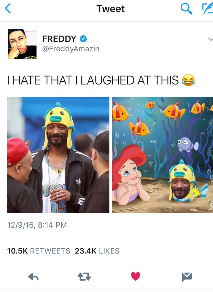 The little mermaid with flounder played by Snoop Dogg