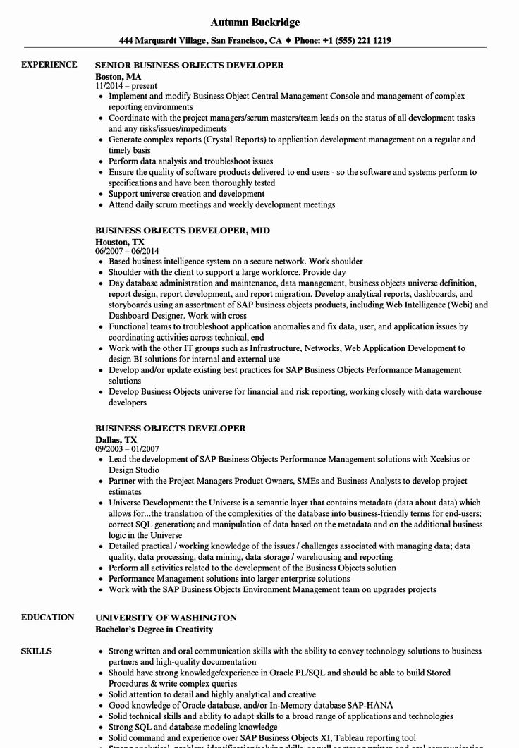 Business Intelligence Developer Resume Elegant Business
