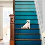 Unexpected colour pops we loveTemple & Webster blog