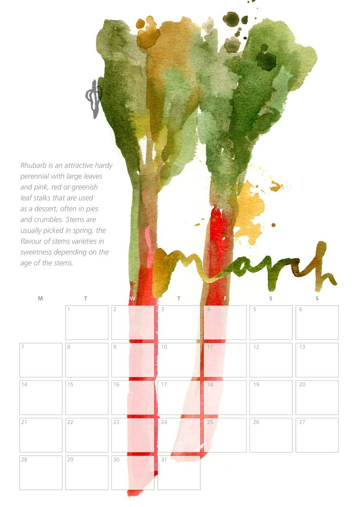 Home Grown - A Festive Collaboration - Truro College Art department and Uneeka, Joanna Lillie's A2 Graphics Calender as a live project. On sale now at Uneeka Life, Truro. 2015 Uneeka Supporting Young Creatives