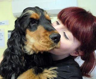 reputable local dog groomers tamworth polesworth booking in