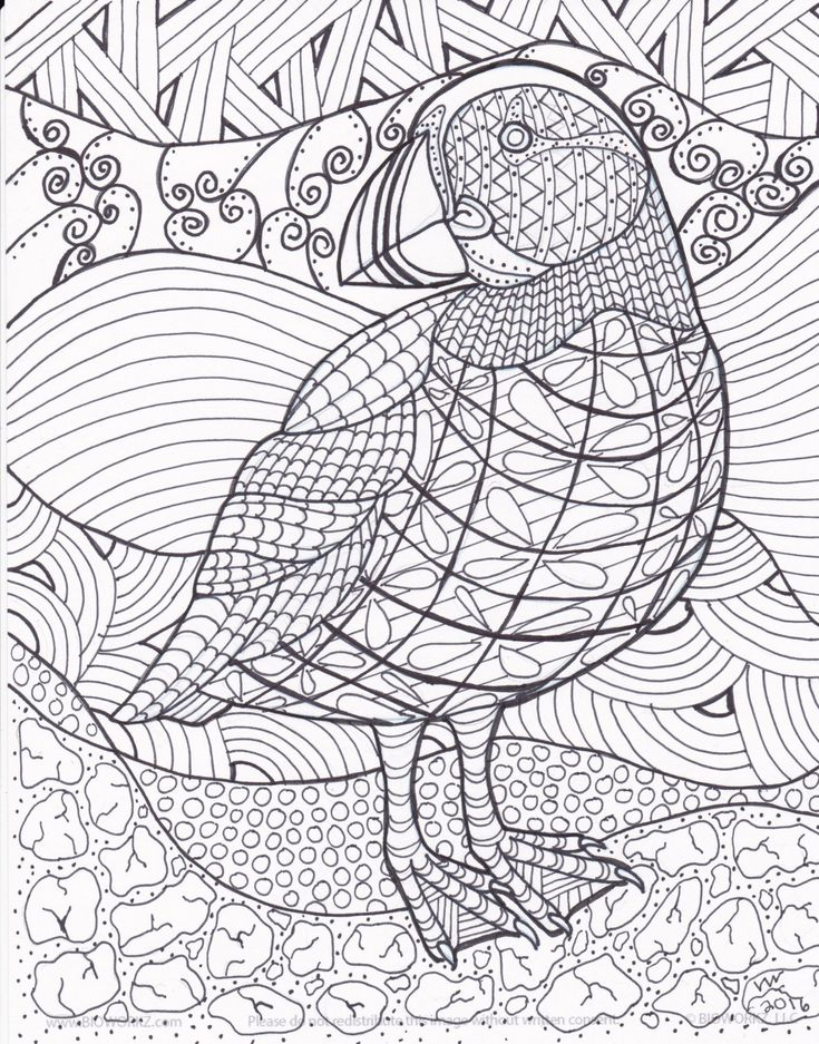 Puffin Zentangle Coloring Page By Inspirationbyvicki On