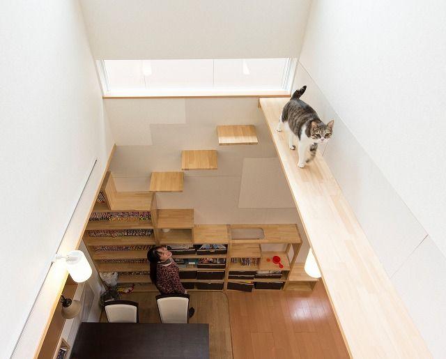 画像 : こんな家に住みたい!!素晴らしきキャットウォークのある家。【猫】 - NAVER まとめ