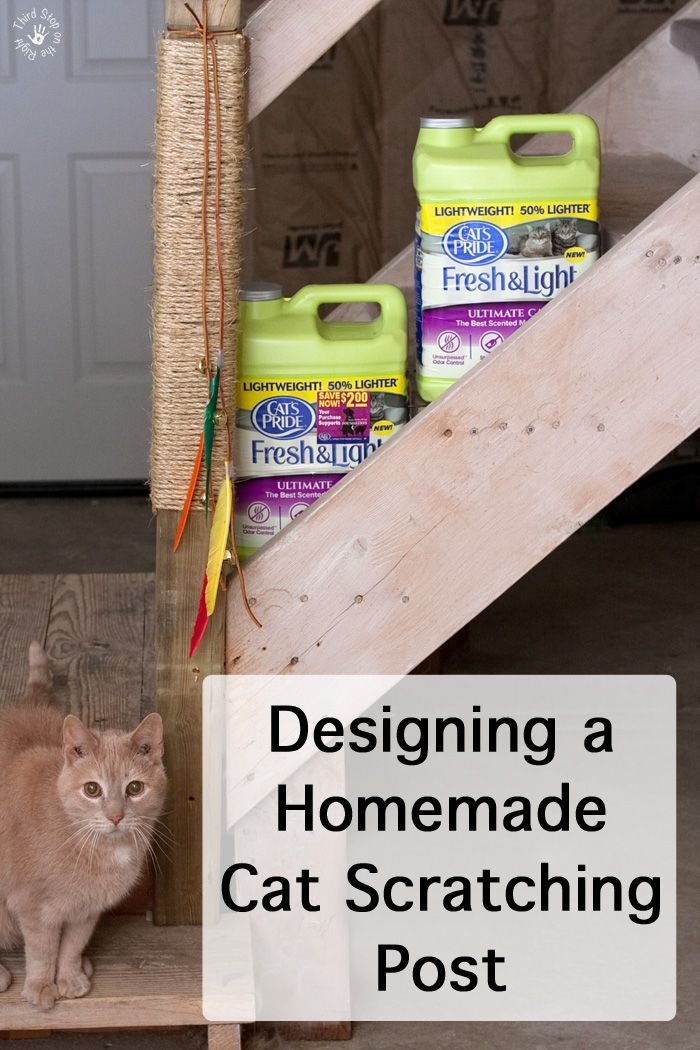 17 best images about house and home on pinterest stains for Homemade cat post