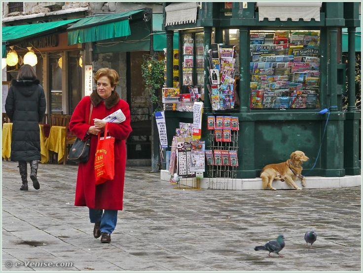 Monsieur chien attendait tranquillement sa maîtresse, assis sur le kioske à journaux. Sur le Campo Santa Maria Formosa, dans le sestier du Castello à Venise