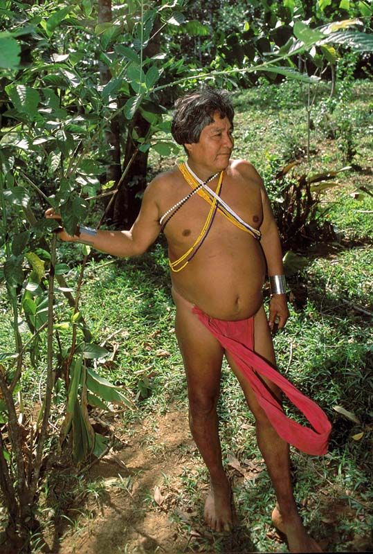 Embera Botanical Doctor - Chagres National Park, Colon - Panama