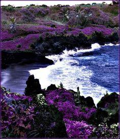 black beach hawaii | Black Sand Beach, Maui, Hawaii, USA | The waters are powerful here and the sand is pitch black, amazing! We love Maui!
