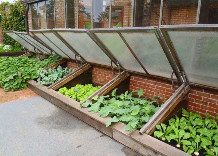 Best 25+ Petite serre de jardin ideas on Pinterest | Petite serre ...