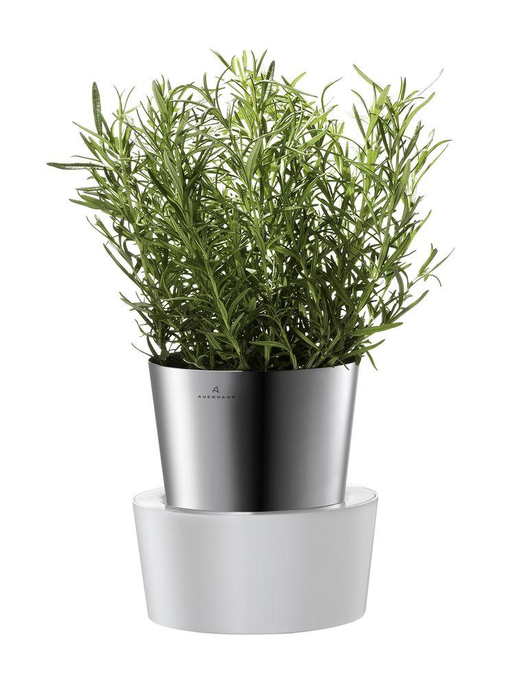 Nowoczesna i elegancka doniczka na zioła Herbs niemieckiej marki Auerhahn. Produkt został wykonany z najwyższej jakości stali nierdzewnej, tworzywa sztucznego i włókna szklanego. Donica pełni nie tylko funkcję praktyczną ale też dekoracyjną.
