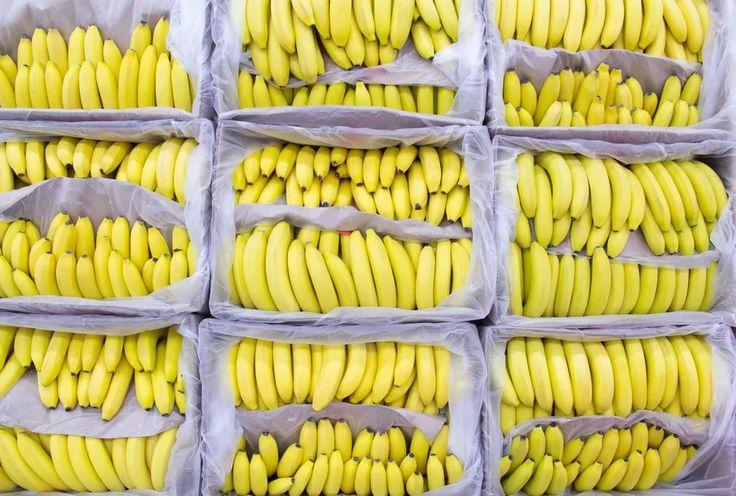 Картинка бананы в коробке