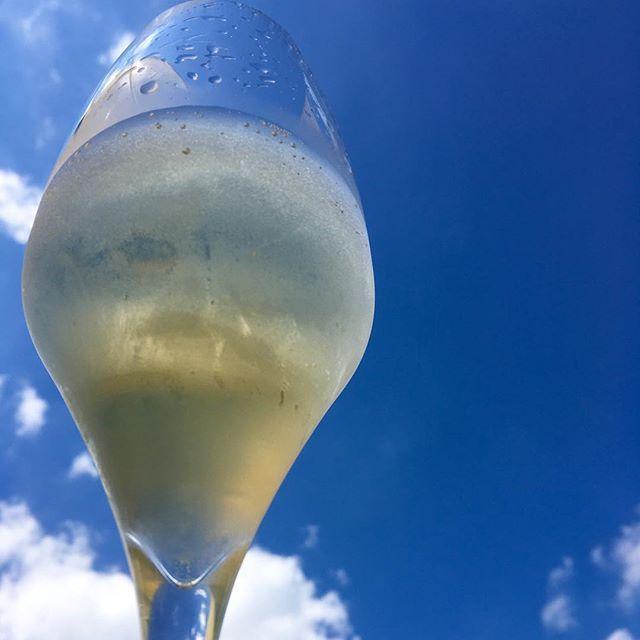 Cheers & Happy Sunday to you!  #bubbly #champagne #champagnelover #wine #winelover #vino #winemoments #mywinemoment #instawine #bluesky #skyisthelimit #skyporn #sundayhappy #happysunday #lifeisgood #joy #littlethings #happyness #blessed