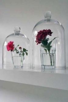Glass Display Dome Cloche 16gbp #verre #industriel