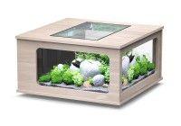 aquarium aquatlantis Aquatable LED 100x100 Eiche Creme 310 Liter