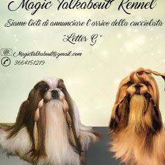 www.magictalkabout.com cucciolata in arrivo prevista per metà ottobre