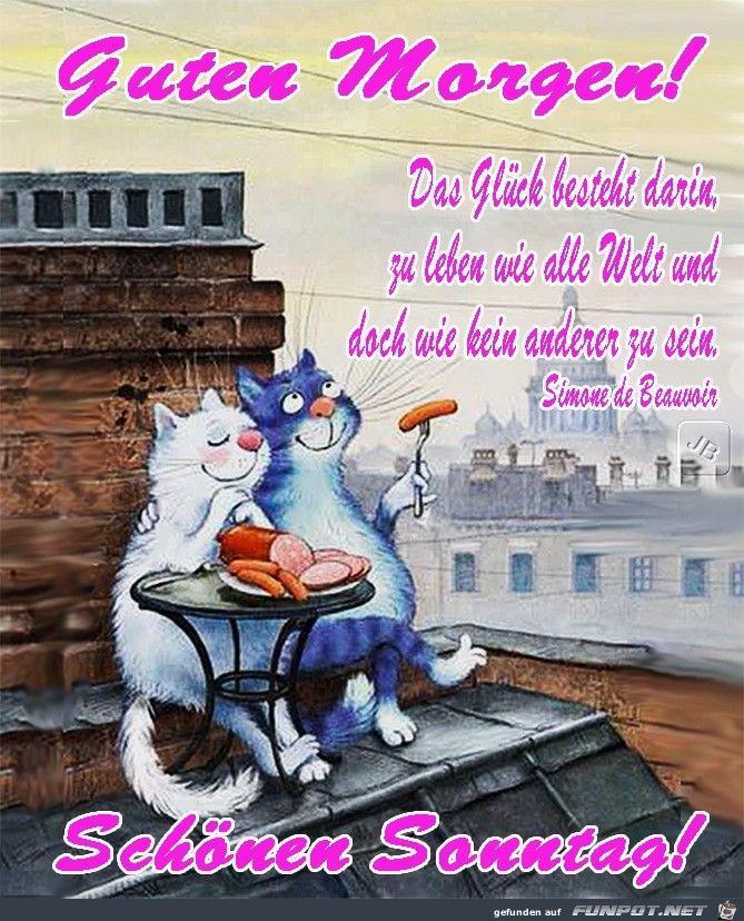 Pin Von 1 210 535 3766 Auf Cats Guten Morgen Lustig Guten