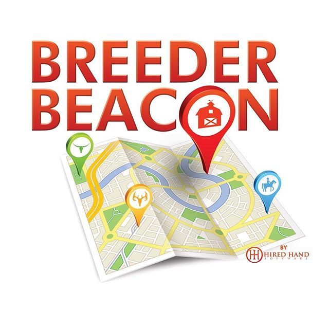 Download our free Breeder Beacon app available in the App Store and Google Play to discover local ranches around you while you're on the road. If you're visiting Navasota, TX for the Cattle Baron's Sale & Futurity this weekend, visit some fellow breeders