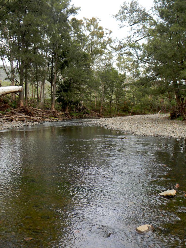 Gordon Country, Goomburra, Queensland, Australia