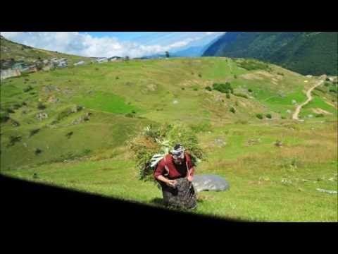 Santeos: Η κόρ' επήεν σον παρχάρ'