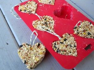 Gelatin Bird Feeders-  Bring 1/4 c water & 1 env. Knox gelatin to simmer & stir to dissolve. Cool a bit.  Stir in 3/4 c. bird seed until coated. Pack well halfway in 3 cookie cutters, lay tied twine loop on top, fill molds to top, packing well. Let it set for a few hours & hang outside.