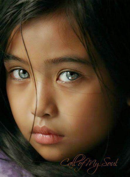 nelusabau24's blog - Nelu Sabau's blog - Skyrock.com