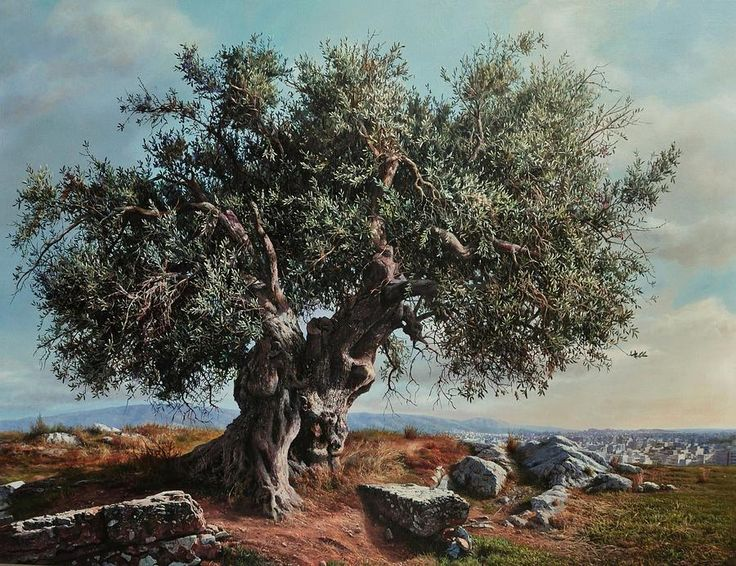 Olive Tree Painting by Elidon Hoxha