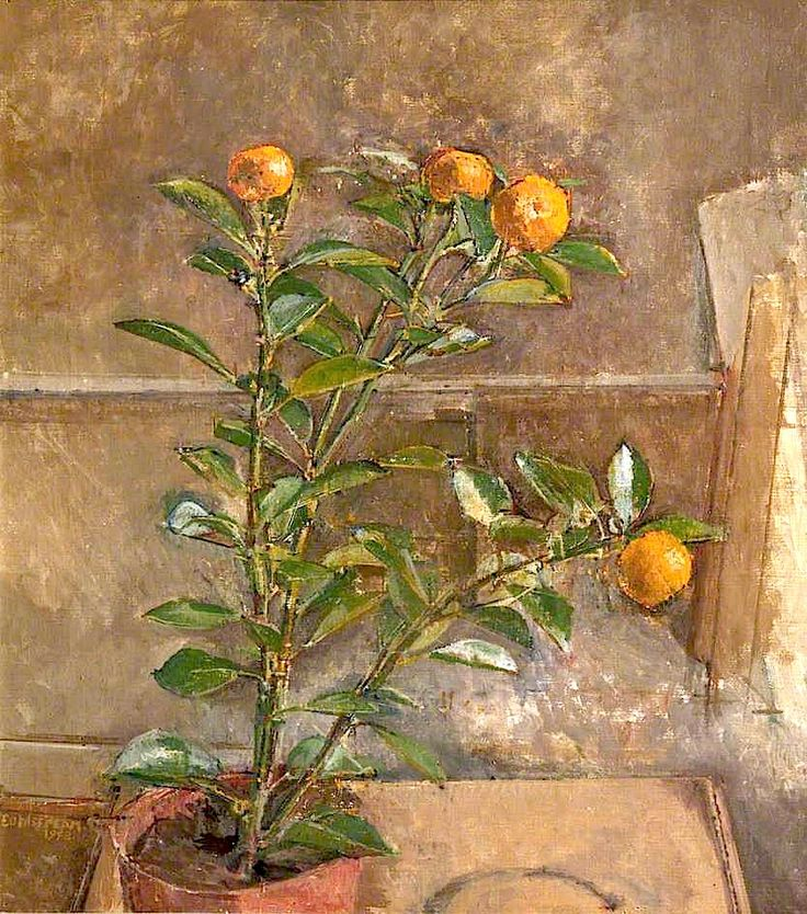 bofransson: Orange Tree by William Menzies Coldstream