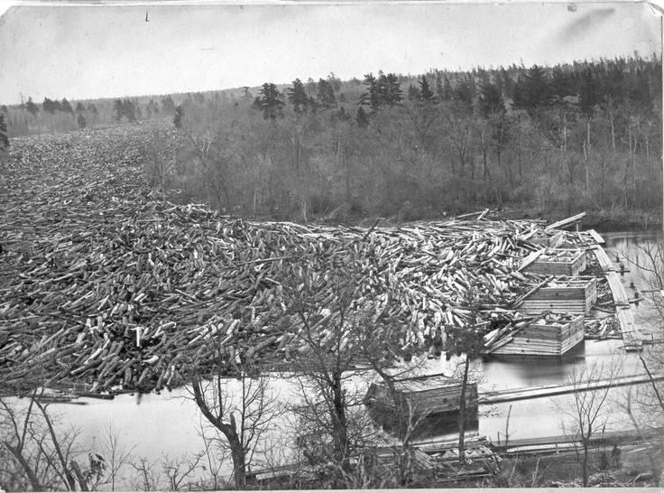 This is a log jam in Chippewa Falls around 1869. There were about 150 million feet of logs jammed. The logs piled up 20 feet above the water in some places. Image courtesty of the Wisconsin Historical Society.