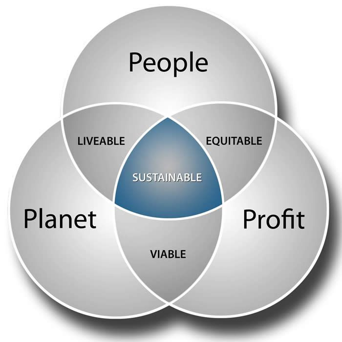 sustainability definition - Google Search