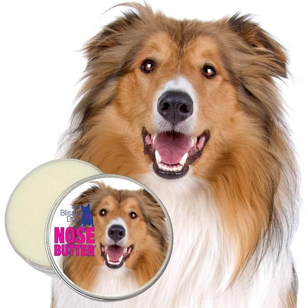 COLLIE NOSE BUTTER® All Natural Support for Collie Nose Problems in several sizes of tins and tubes.