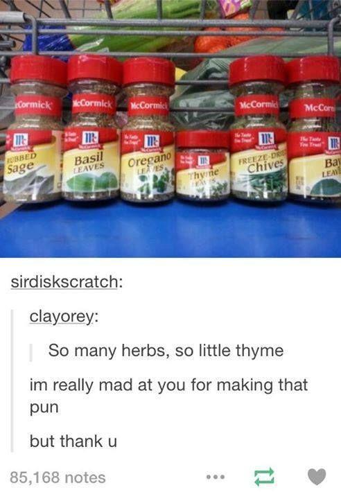 So many puns so little thyme   Thyme Johannah. Thyme.