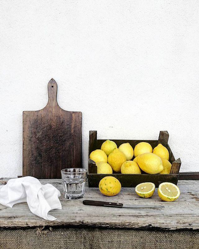 E Se la vita mi da limoni, me ne faccio una bella limonata! 😜✌ . . A proposito, state continuando a bere acqua e limone come vi dissi tempo fa al mattino che fa benissimo?! . . . . #sicilia #sicily #casa #feelfreefeed #ig_Sicilia #ig_sicily #whatitalyis #igerssicilia #volgo_sicilia #limone #limoni #lime #limes #limon #lemon #lemonysnicket #lemons #tv_living #tv_stilllife #tv_pointofview #click_vision #click📷 #click_italy #liveauthentic #frutta #🍋 #limones