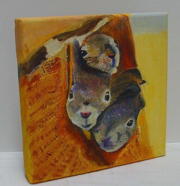 Pipo-oravat, 140 €