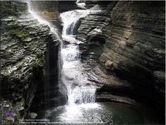 Watkins Glen for those that love waterfalls.