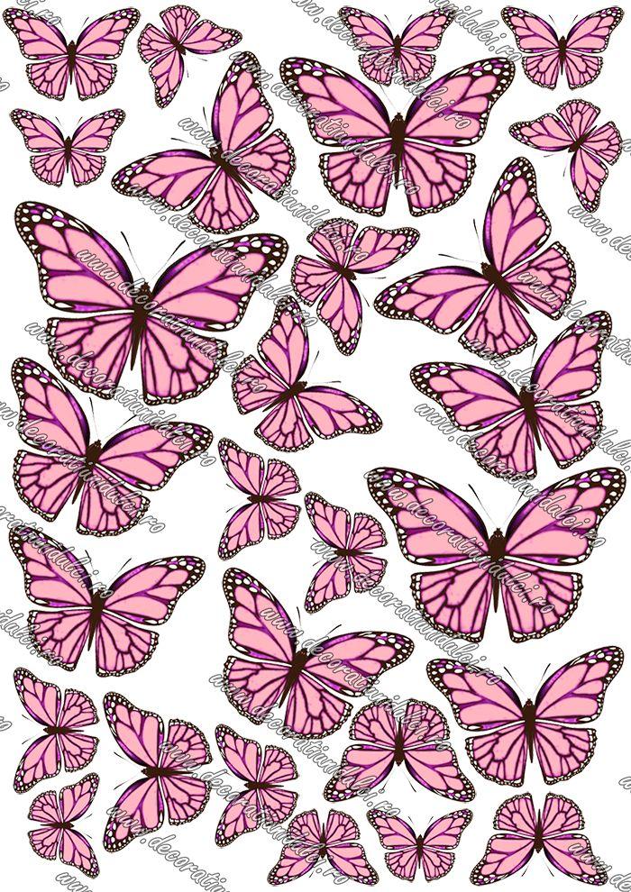 Măriţi imaginea Imagine comestibila fluturi - 5 Imagine comestibila, imprimata pe foaie de icing de dimensiunea unei coli A4, utilizata pentru decorarea torturilor, brioselor si  diferitelor dulciuri.  Edible sheets for cakes.